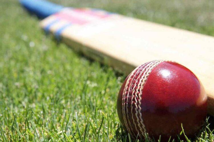 L'accoglienza a Novara, tra reti multi-attore e una partita di cricket